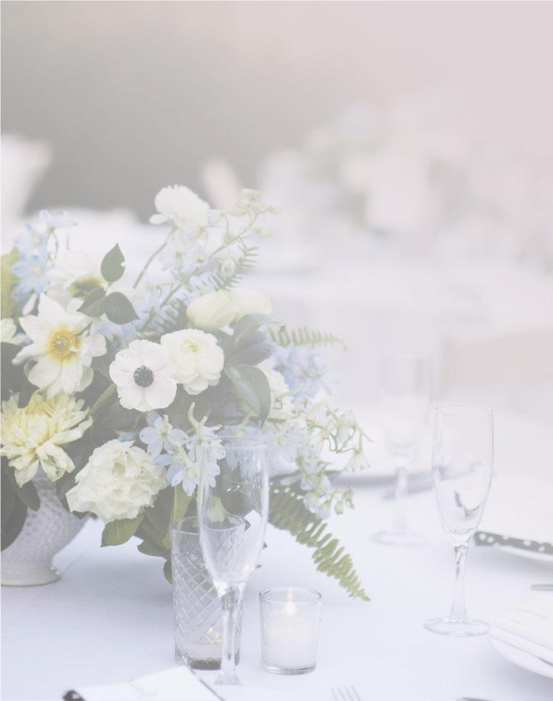 wedding planner 30